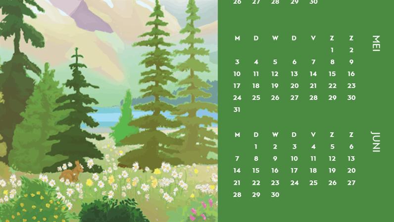 Kwartaalkalender rond het thema van seizoenen in de natuur.
