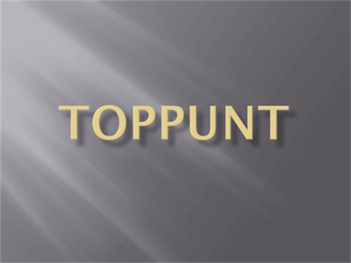 Toppunt