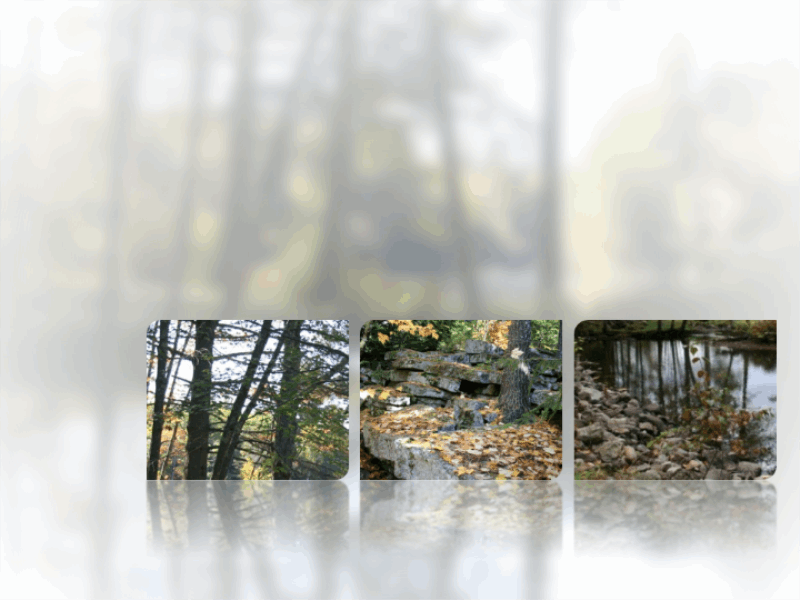 Obrazy z odbiciami i rozmytym tłem