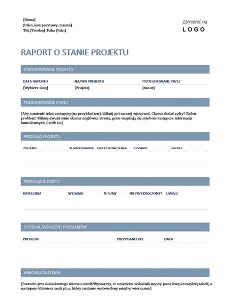 Raport o stanie projektu