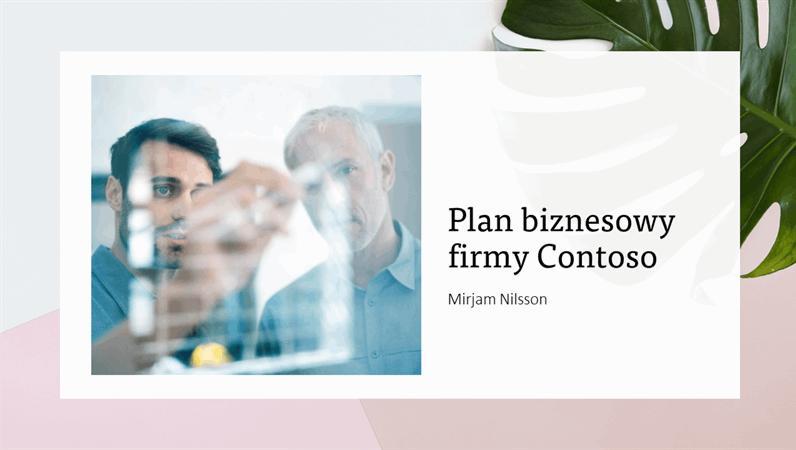 Prezentacja biznesplanu