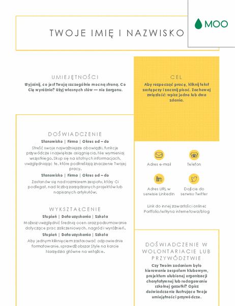 Przejrzysty i schludny życiorys, zaprojektowany przez firmę MOO