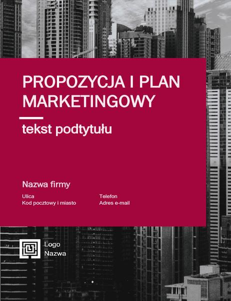 Raport biznesowy (projekt profesjonalny)