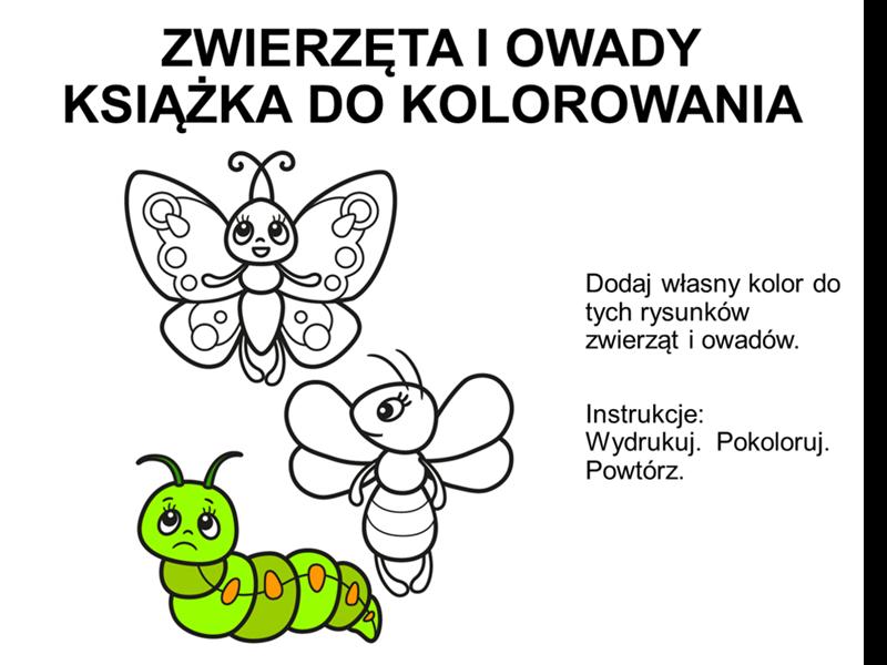Książka do kolorowania zwierząt i owadów