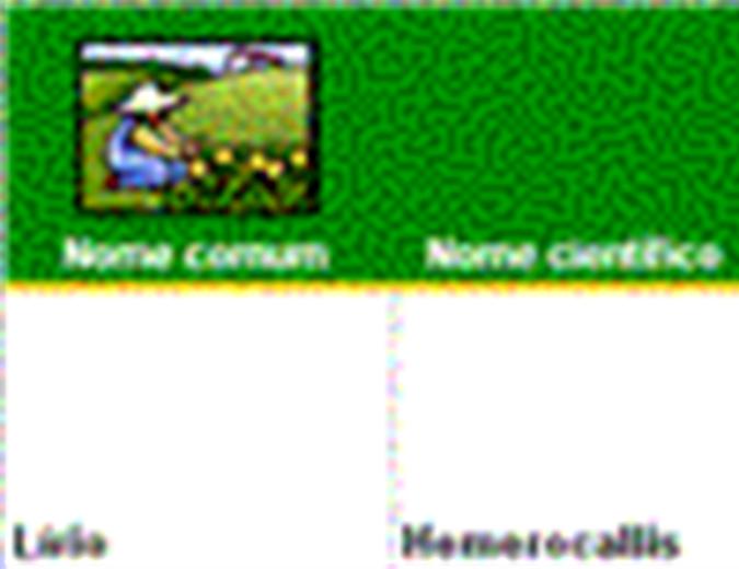 Lista de plantas ornamentais