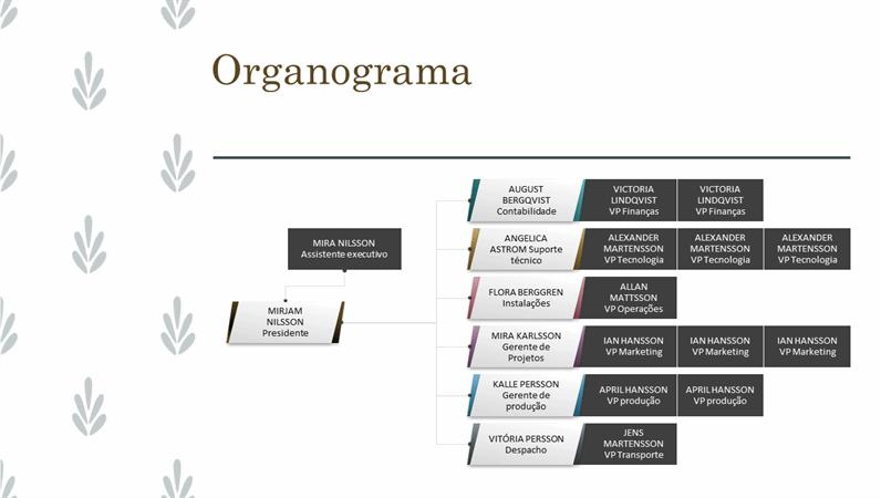 Organograma horizontal da organização