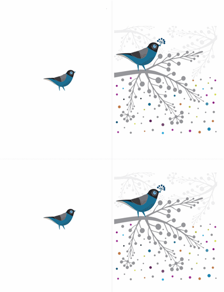 Cartões de pássaros e frutos