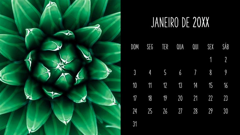Calendário mensal de suculentas