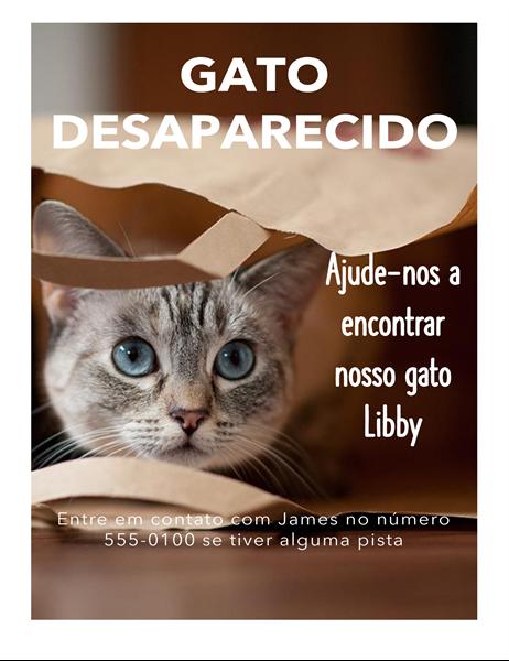 Panfleto de gato desaparecido