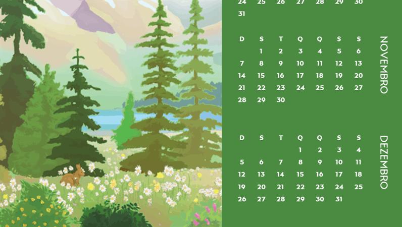 Calendário trimestral das estações e natureza selvagem