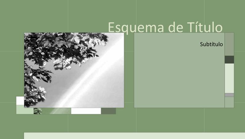 Diapositivos de estrutura a verde-escuro