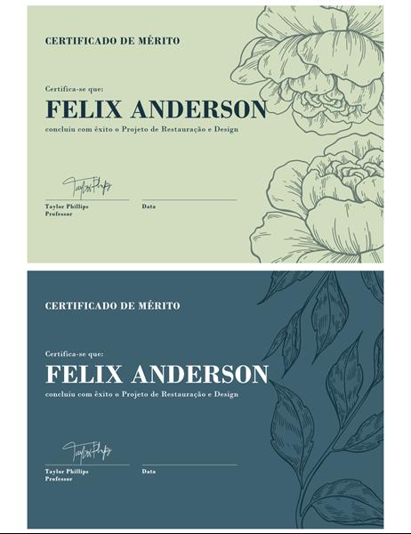 Certificado de Mérito
