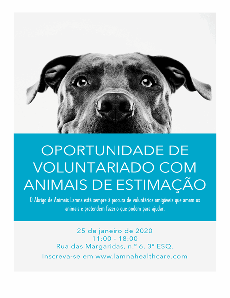 Panfleto para oportunidades de voluntariado com animais de estimação