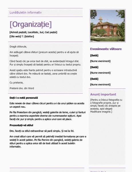 Buletin informativ pentru școală