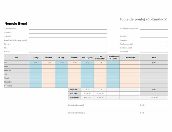 Foaie de pontaj săptămânală (8 1/2 x 11, vedere)