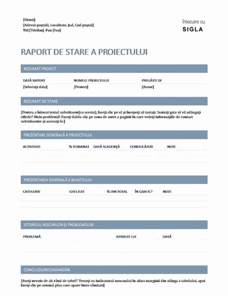 Raport stare proiect