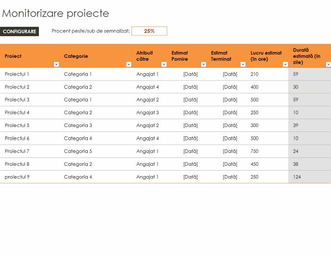Monitorizare proiecte