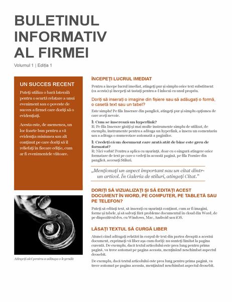 Buletin informativ al firmei