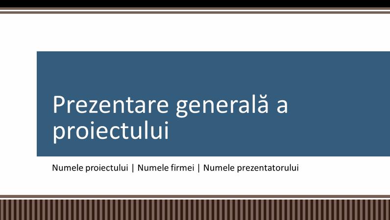 Prezentare generală a planificării proiectelor de firmă