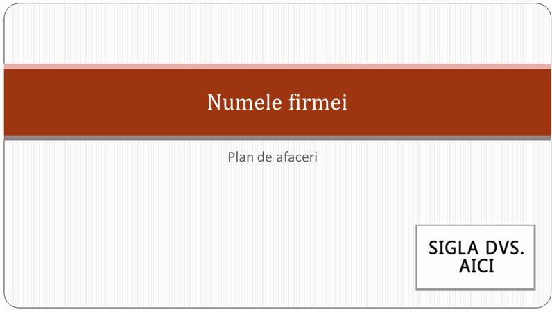 Prezentarea planului de afaceri