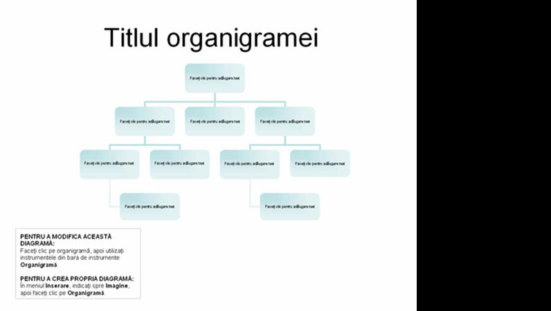 Organigramă de bază