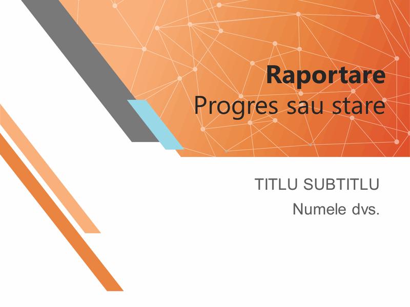 Raportare progres sau prezentarea unei stări