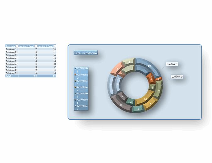 Diagramă în formă de tor secolul 21