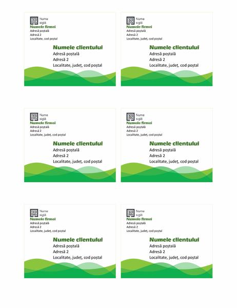 Etichete de livrare (proiectare Val verde, 6 pe pagină)