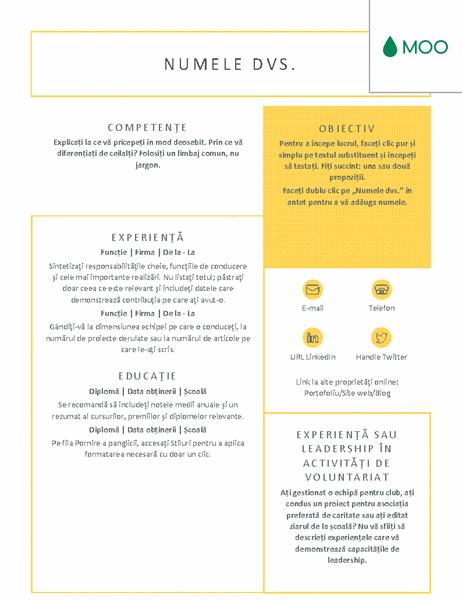 CV clar și îngrijit, proiectat de MOO