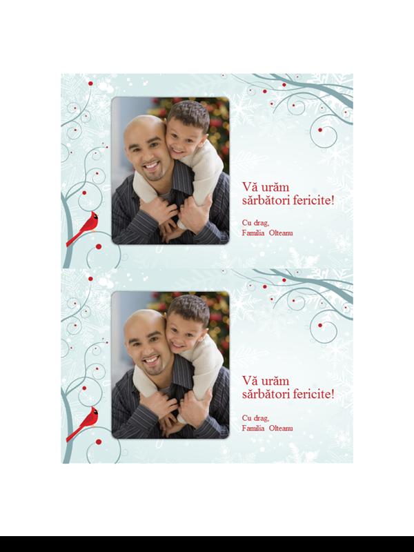 Felicitări de sărbători fotografice cu fulgi de nea (două pe pagină)