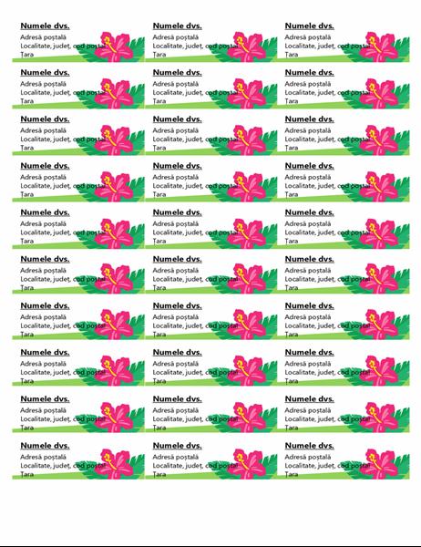 Etichete tropicale (30 pe pagină)