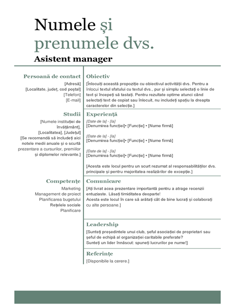 CV modern simplu
