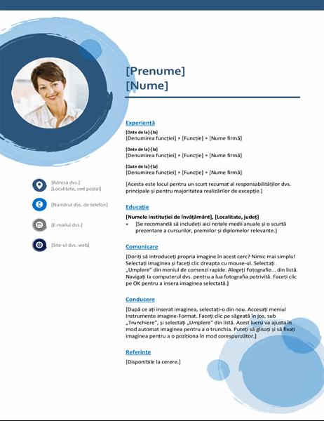 CV Sfere albastre