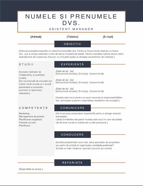 CV minimalist