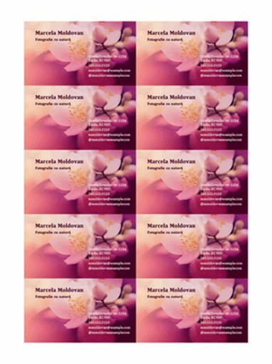 Cărți de vizită (fotografie cu flori)