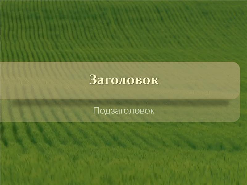 Луга (с видео)