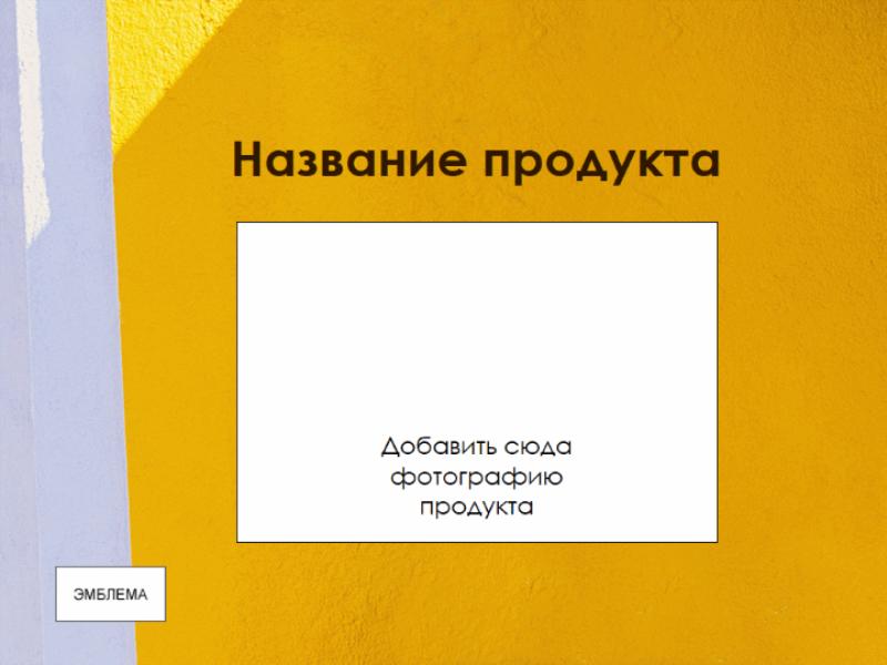 Презентация «Обзор продукта»