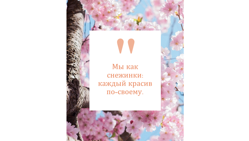 Новости Instagram и цитаты (книжная ориентация)