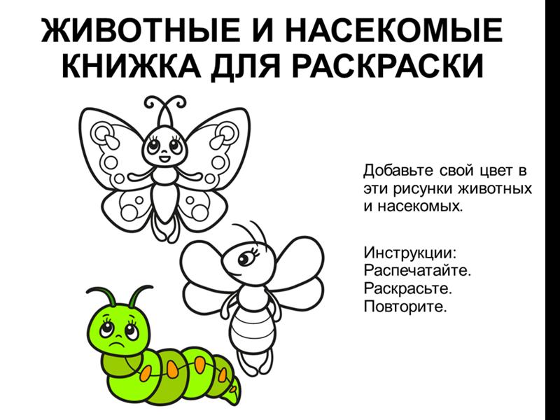 Раскраска с животными и насекомыми