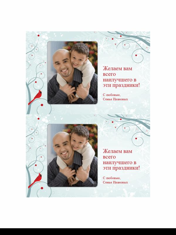 Праздничные открытки с фотографией и оформлением снежинками (две на странице)