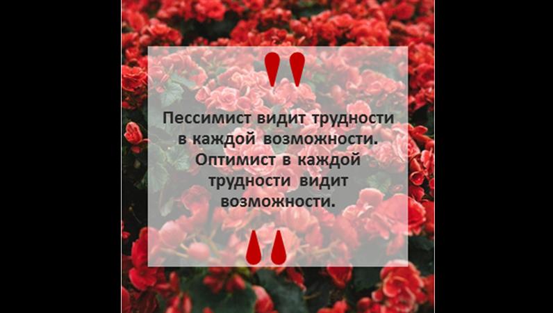 Новости Instagram и цитаты (квадратный макет)