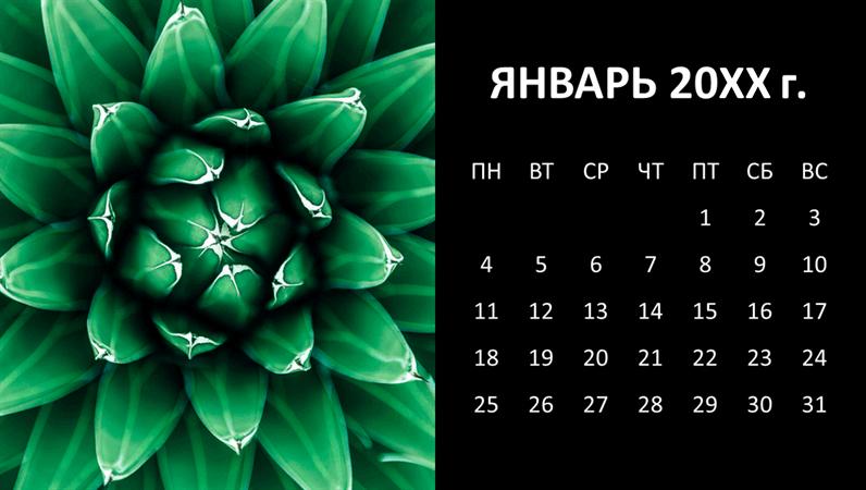 Ежемесячный календарь с суккулентами