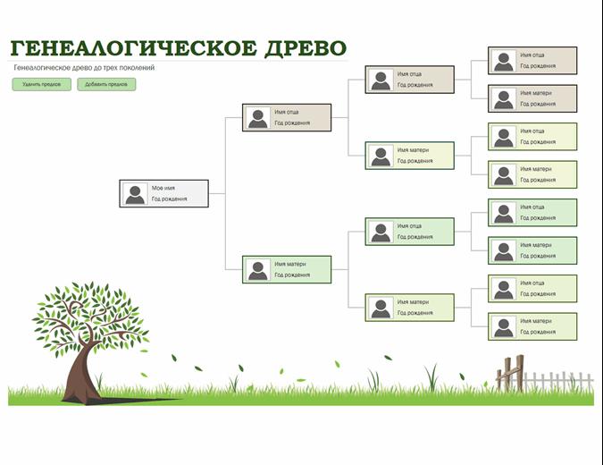 Генеалогическое древо с фотографиями