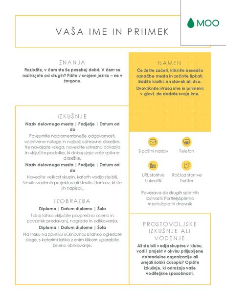 Jedrnat in pregleden življenjepis, zasnovan v podjetju MOO