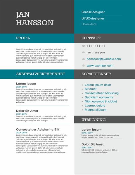 CV med fält i olika färger