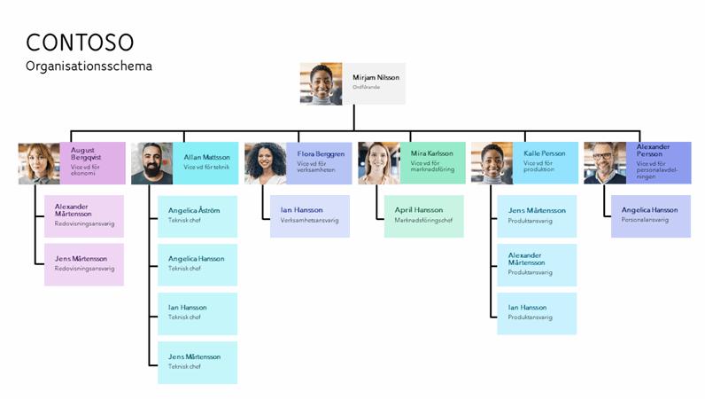 Minimalt organisationsschema