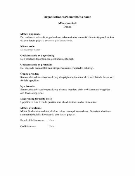 Protokoll för organisationsmöten (långt format)
