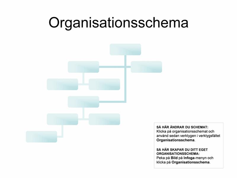Komplext organisationsschema