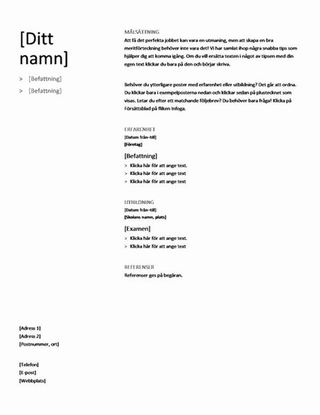 Kronologisk meritförteckning (enkel design)