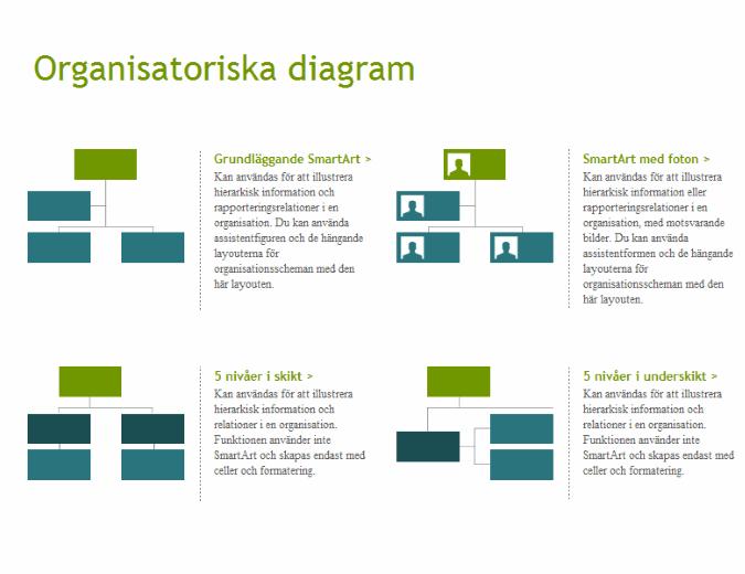 Organisationsscheman (grafiska)
